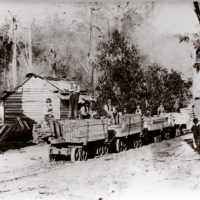 4664 Mm Longwarry Maisey Sardine Creek Mill Men On Trucks.